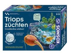 Kosmos Triops züchten
